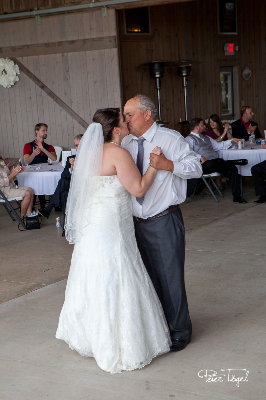 Wedding Reception - Father Daughter Dance